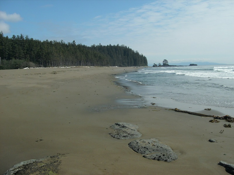 Beautiful West Coast Trail beach.JPG