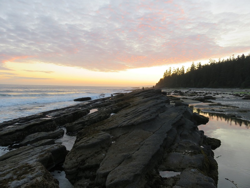 Cribbs Beach, guided hike, West Coaast Trail.JPG