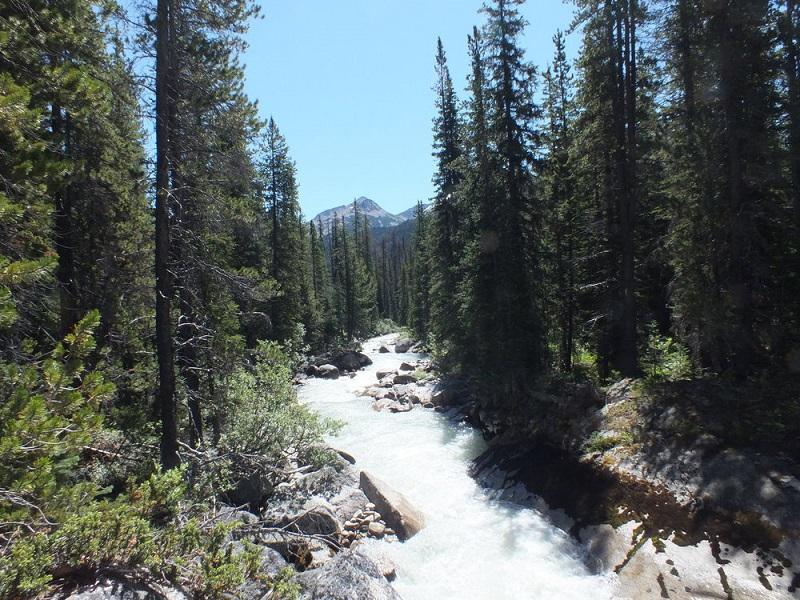 Slim Creek, Chilcotins.JPG
