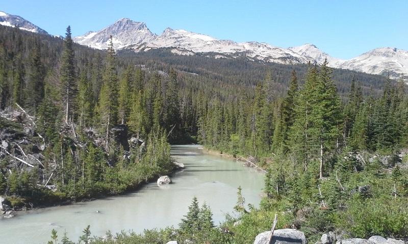 Slim Creek, start of the hike.jpg