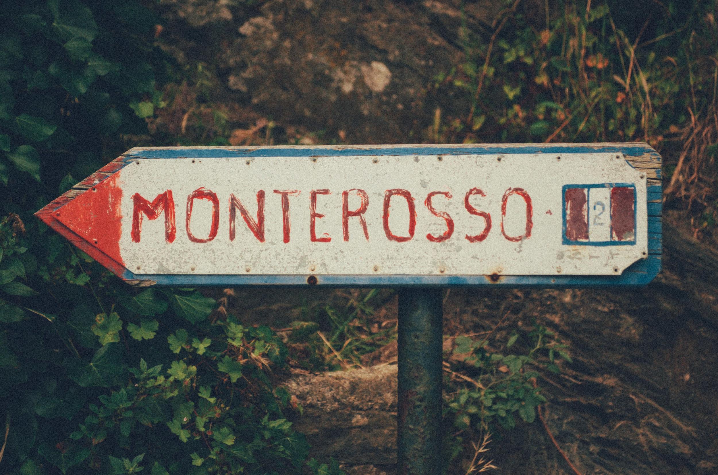 Cinque Terre (3 of 41).jpg