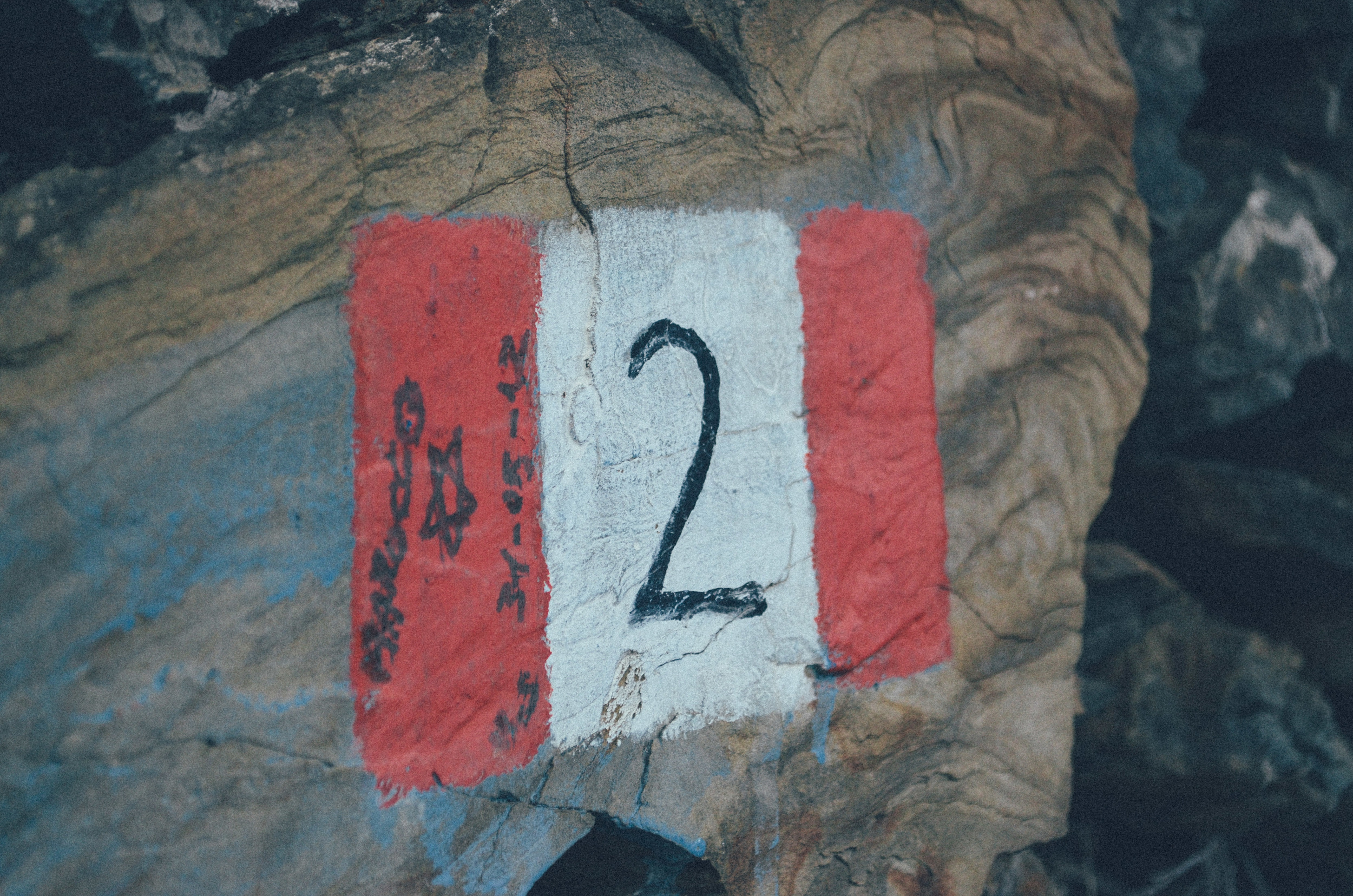 Cinque Terre (6 of 41).jpg