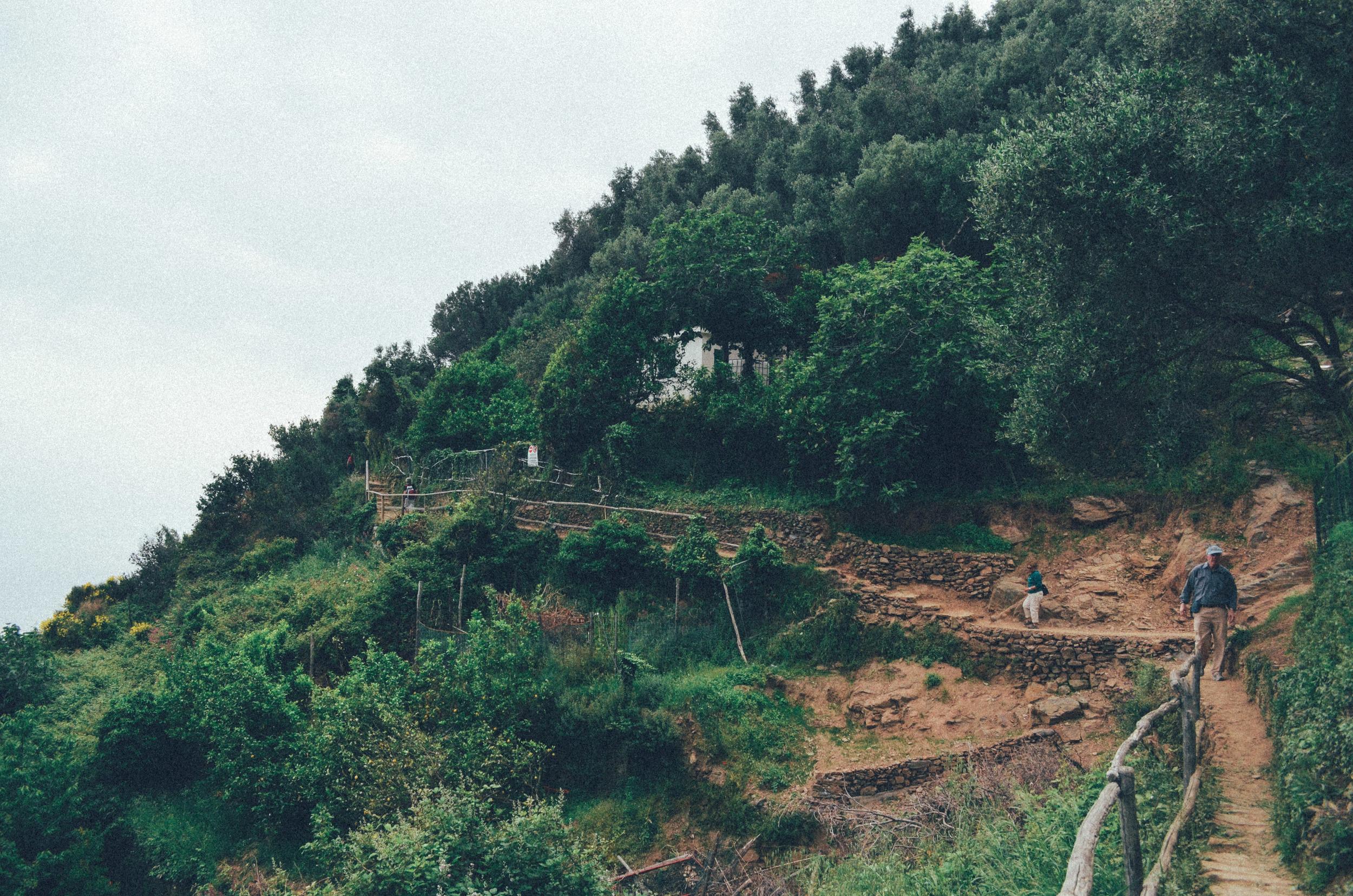 Cinque Terre (7 of 41).jpg