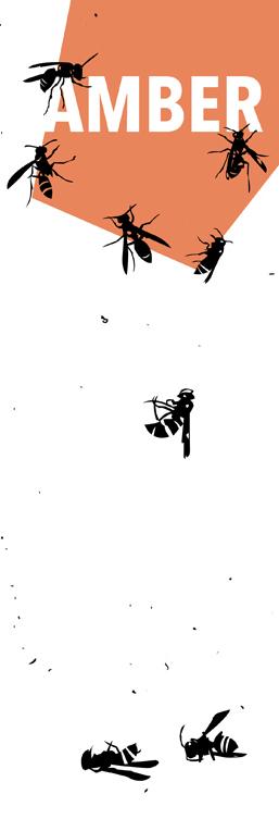 AMBER wasp strip.jpg
