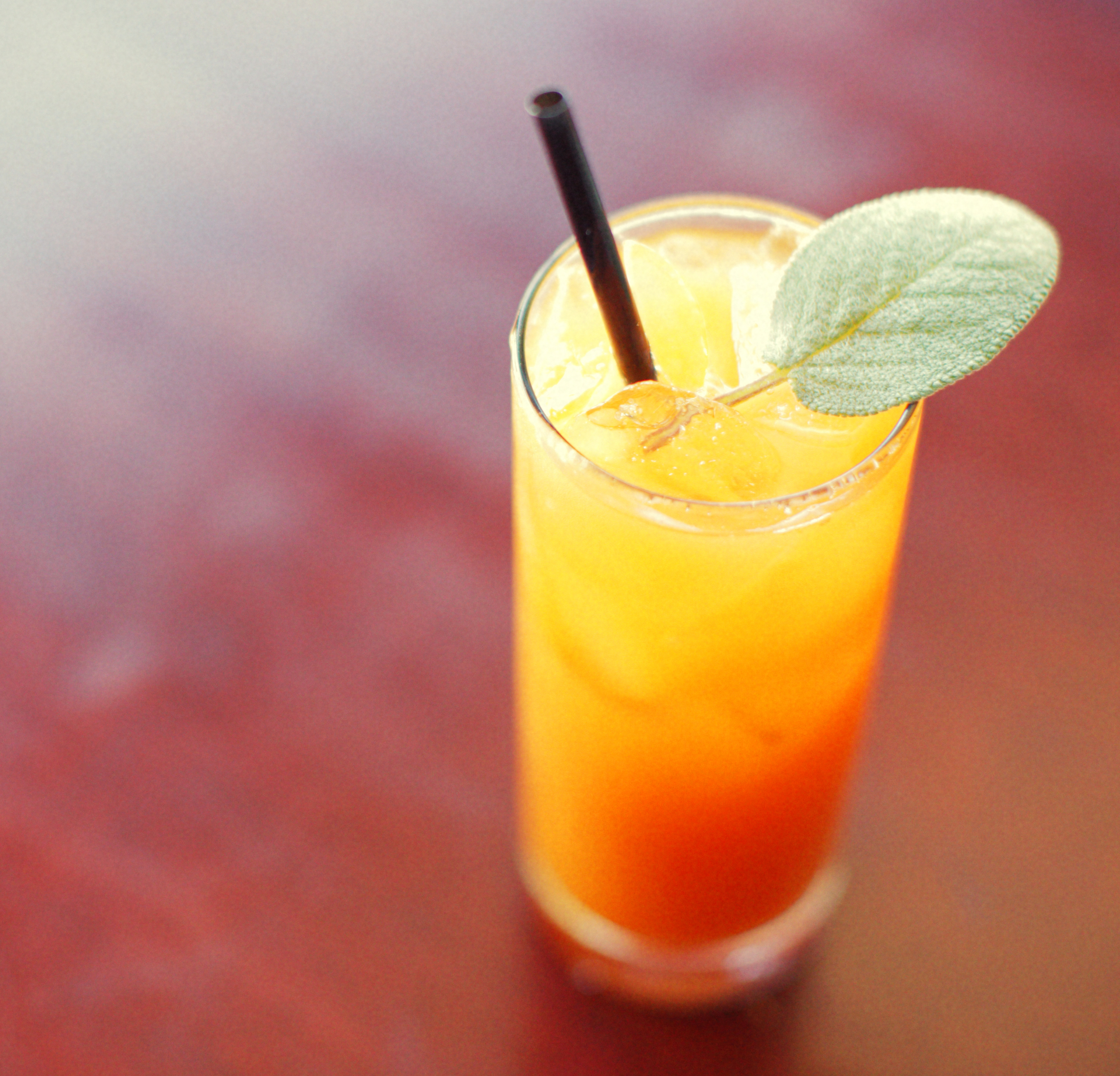 Orange cocktail. Photo: Jane Kortright