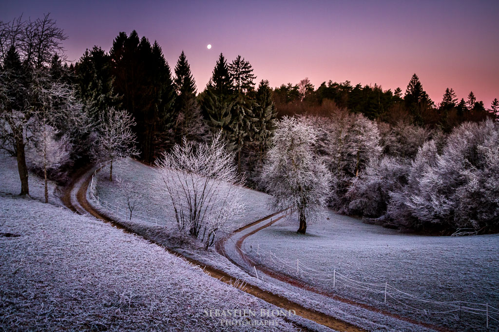 A beautiful frosty morning in the Slovenian hills