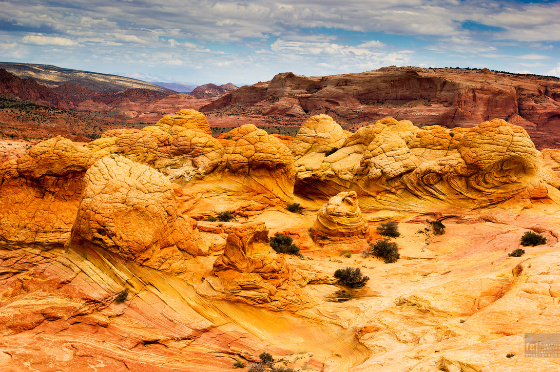 A section or orange rocks situated in the Paria Canyon-Vermillion Cliffs Wilderness on the border of Arizona and Utah