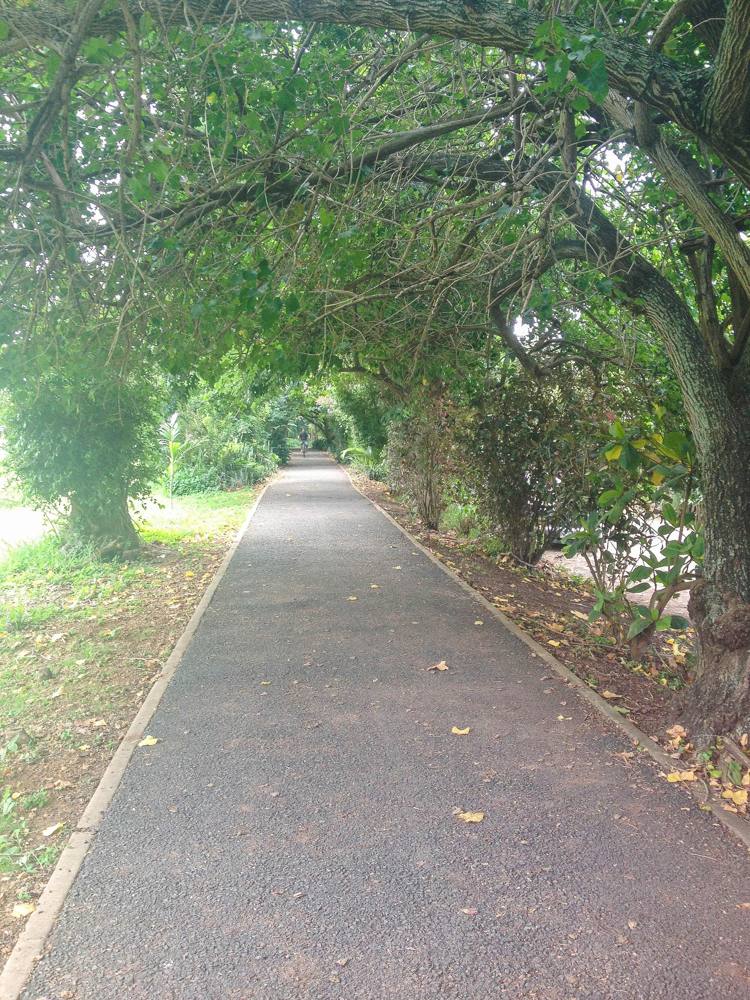 North Shore Bike Path