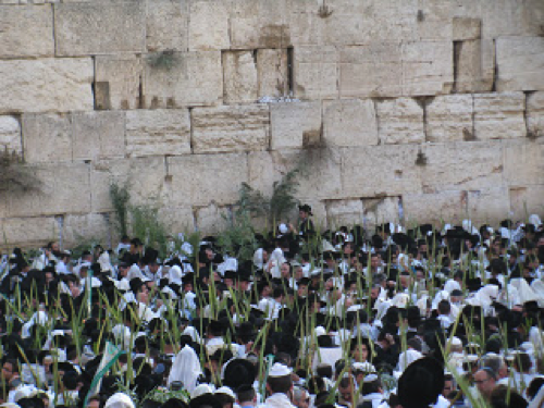 western wall2.png