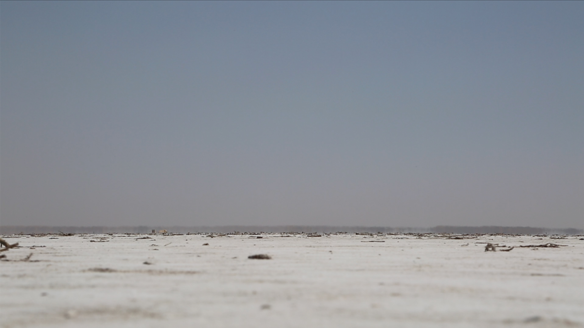 Lowest Point Kati Thandi, Belt Bay, 2014, HD video 1.48' loop