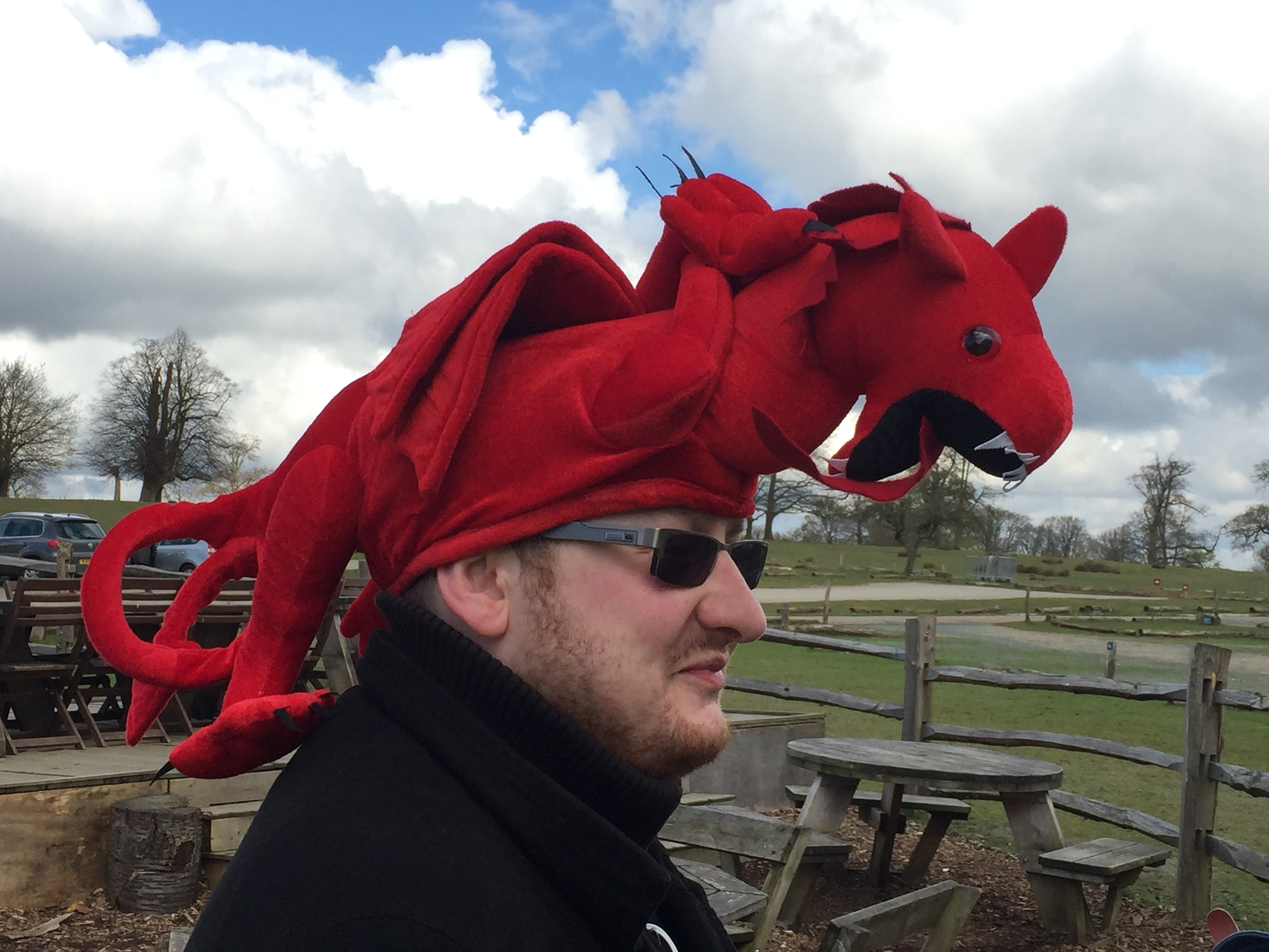 St Georges Day Knole Park