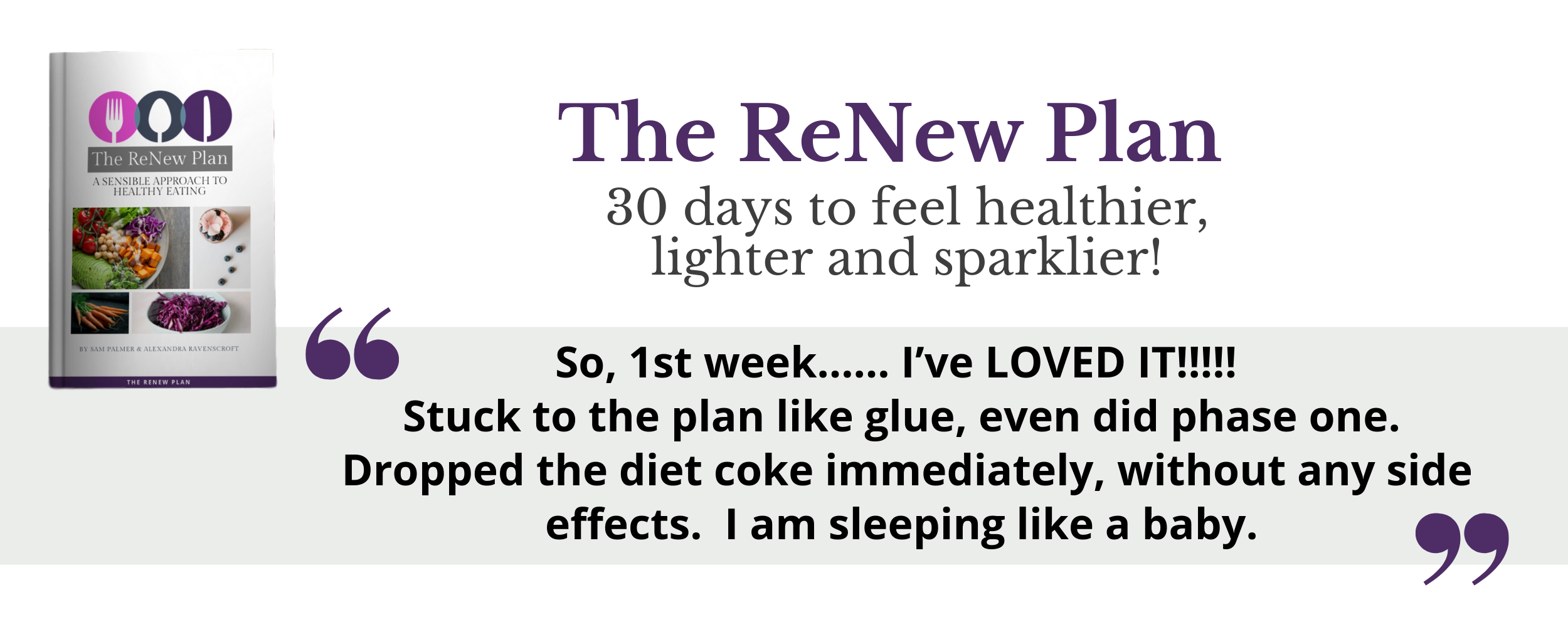 2019 The ReNew Plan - looks like this!.png