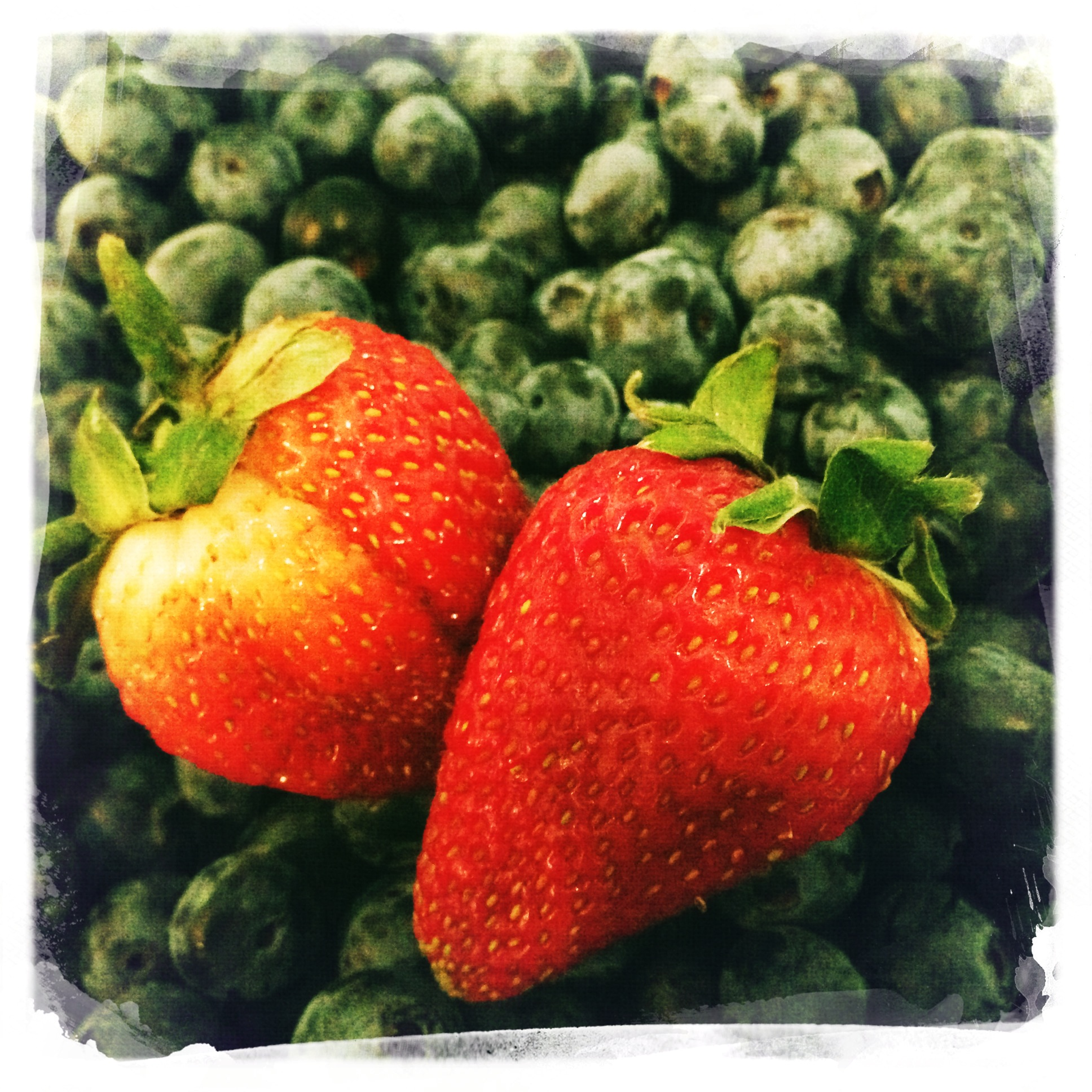 blueberrys and strawberrys pic.JPG