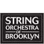 string orch of bklyn logo a.jpg