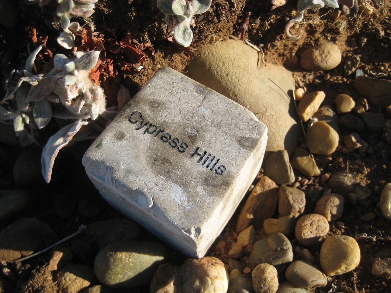 "Hidden Tyndall | Cypress Hills by Terri Fidelak, 2012, engraved tyndall stone, 2""x2""x2"""