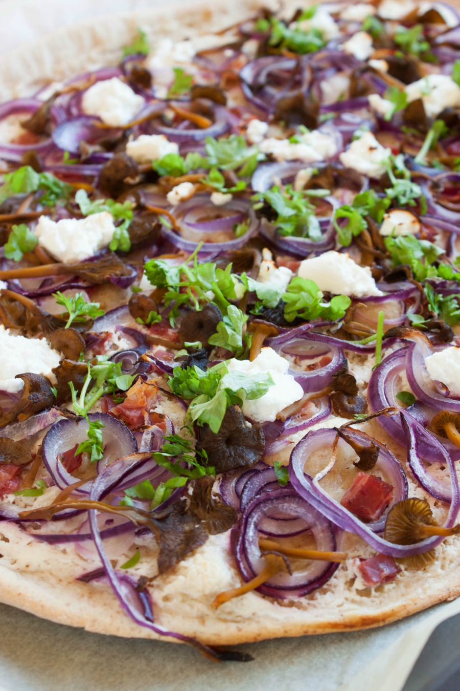 flammkuchen with funnel chanterelles, black forest ham, & goat cheese :: my blue&white kitchen