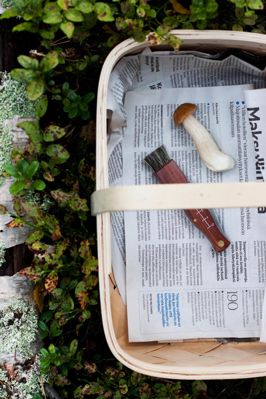 Into The Woods – Crostini with Wild Mushrooms & Ricotta — My ...