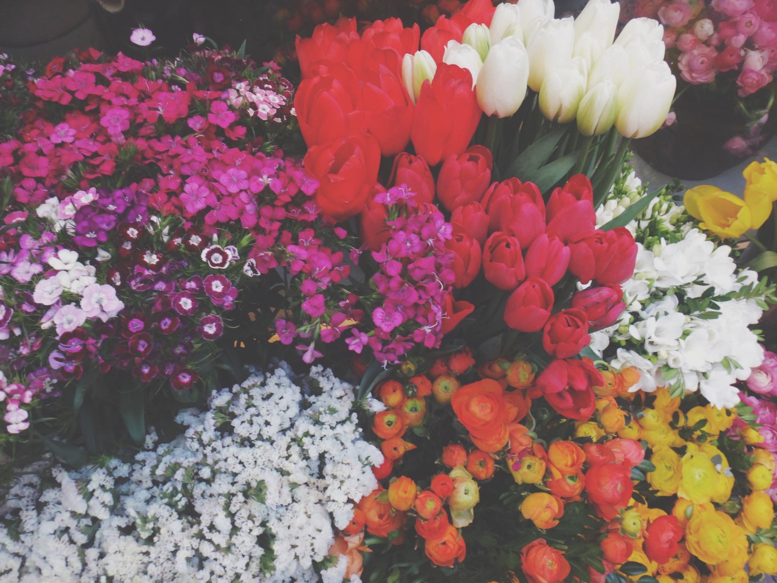 Flowers on Istiklal Street, Istanbul