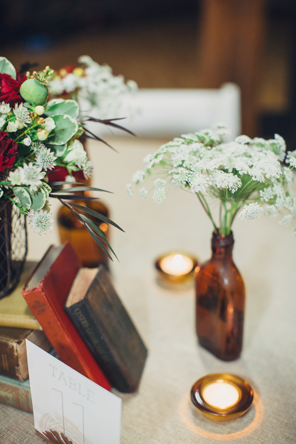 Queen Anne's Lace and Old Books