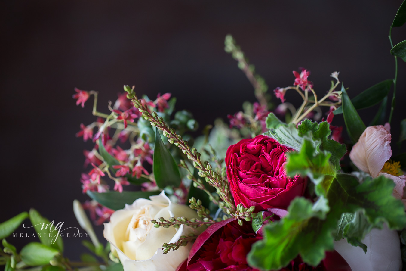 Red piano garden rose, geranium leaves, pieris // Nashville Wedding Floral Design