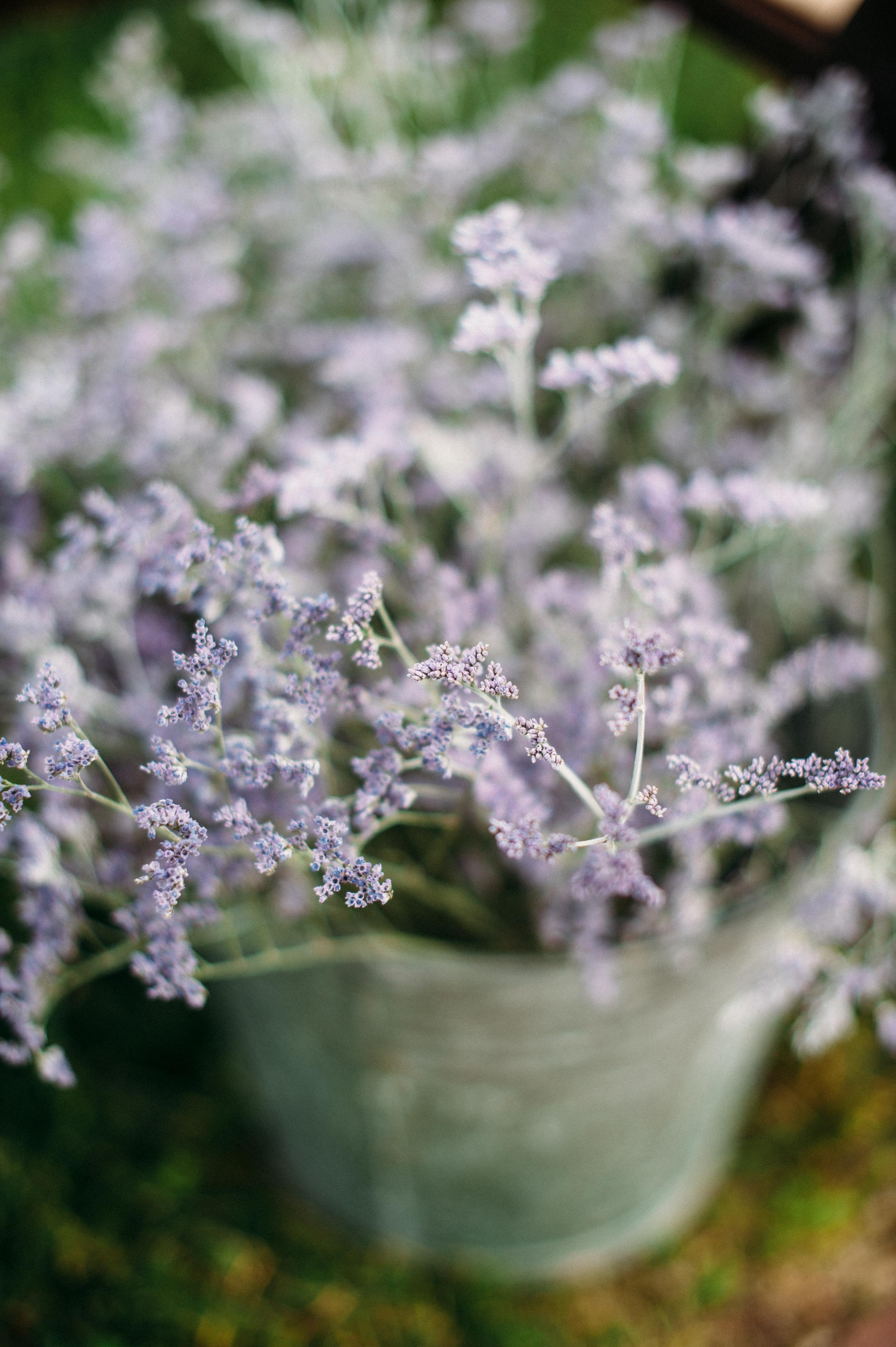 Misty blue limonium / Nashville Wedding Flowers