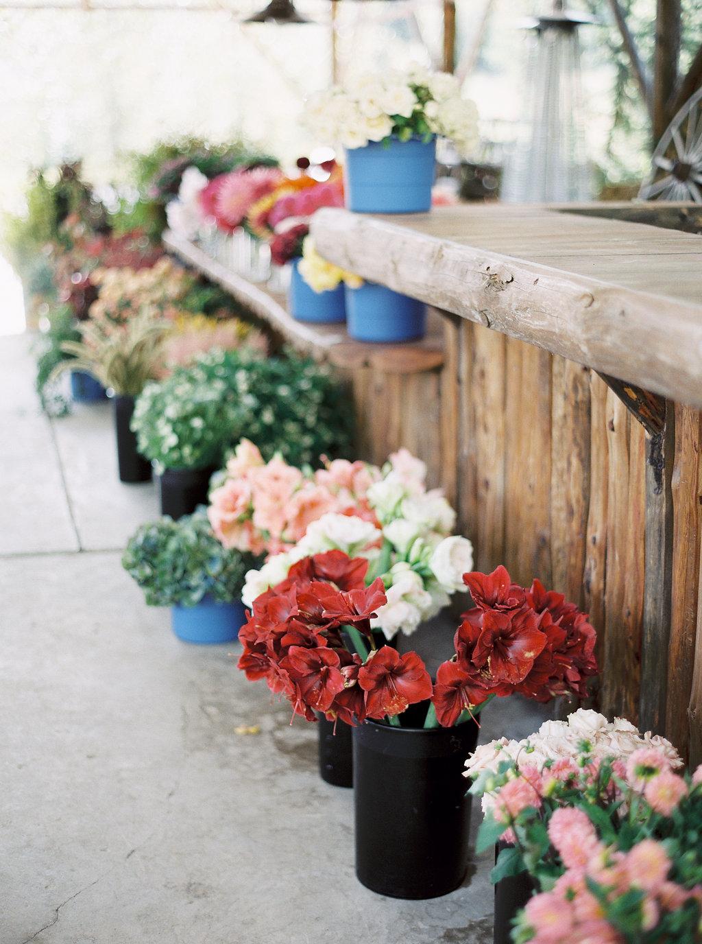 Buckets of Gorgeous Flowers // Montana Flower Workshop