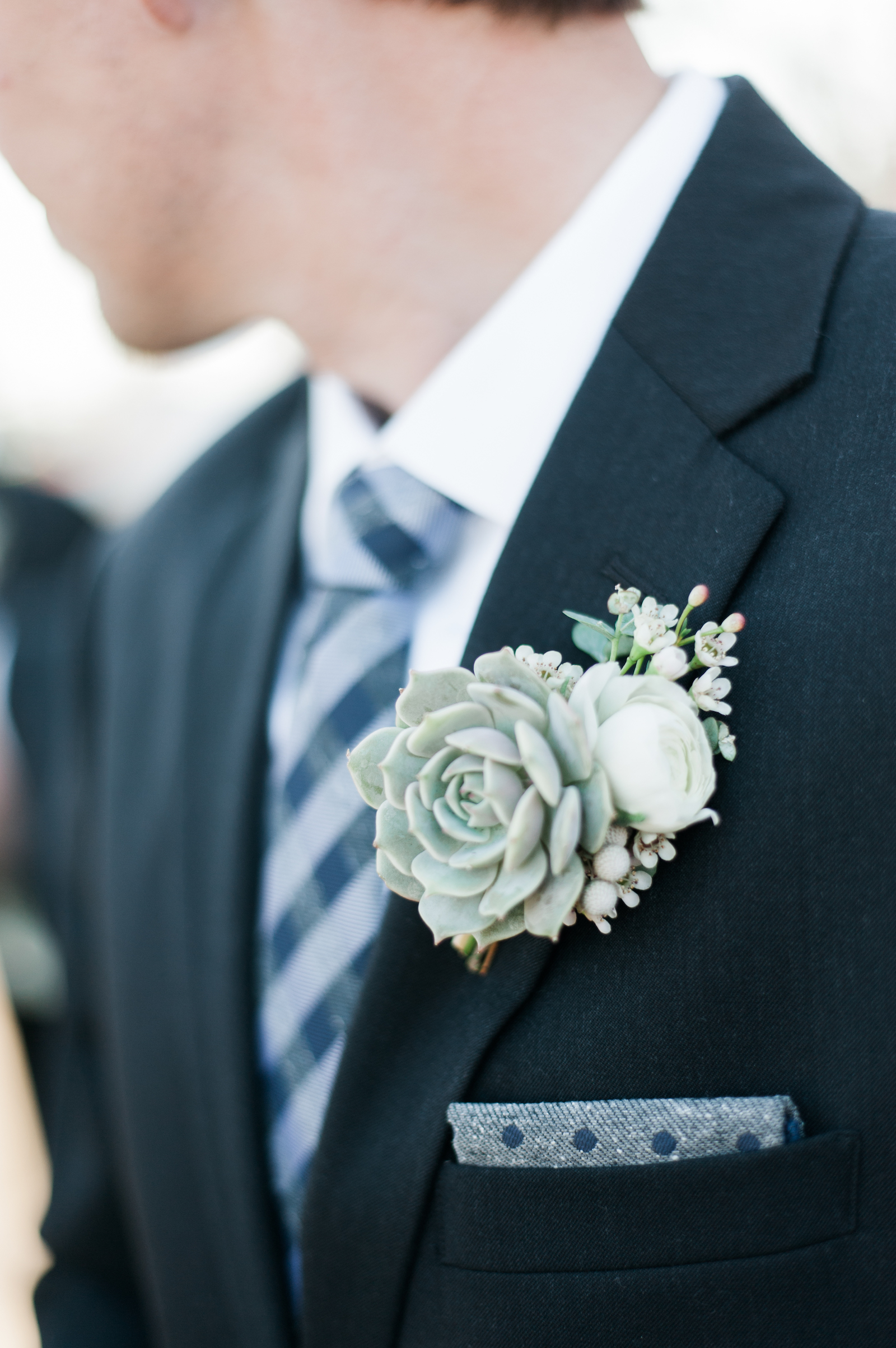 Groom's winter boutonniere with succulent and white ranunculus