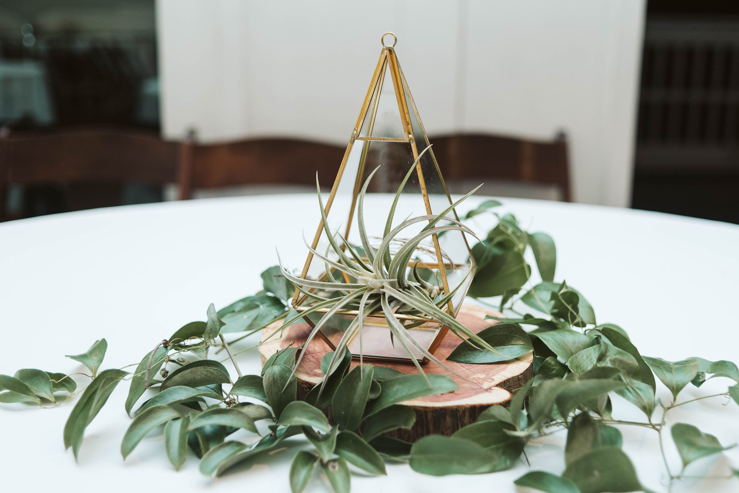 Gold geometric terrarium centerpiece with an air plant and greenery // Nashville, TN Wedding Florist