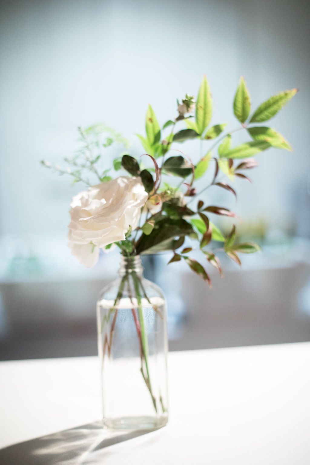 SImple bud vase with a white garden rose and greenery. Nashville Wedding Florist