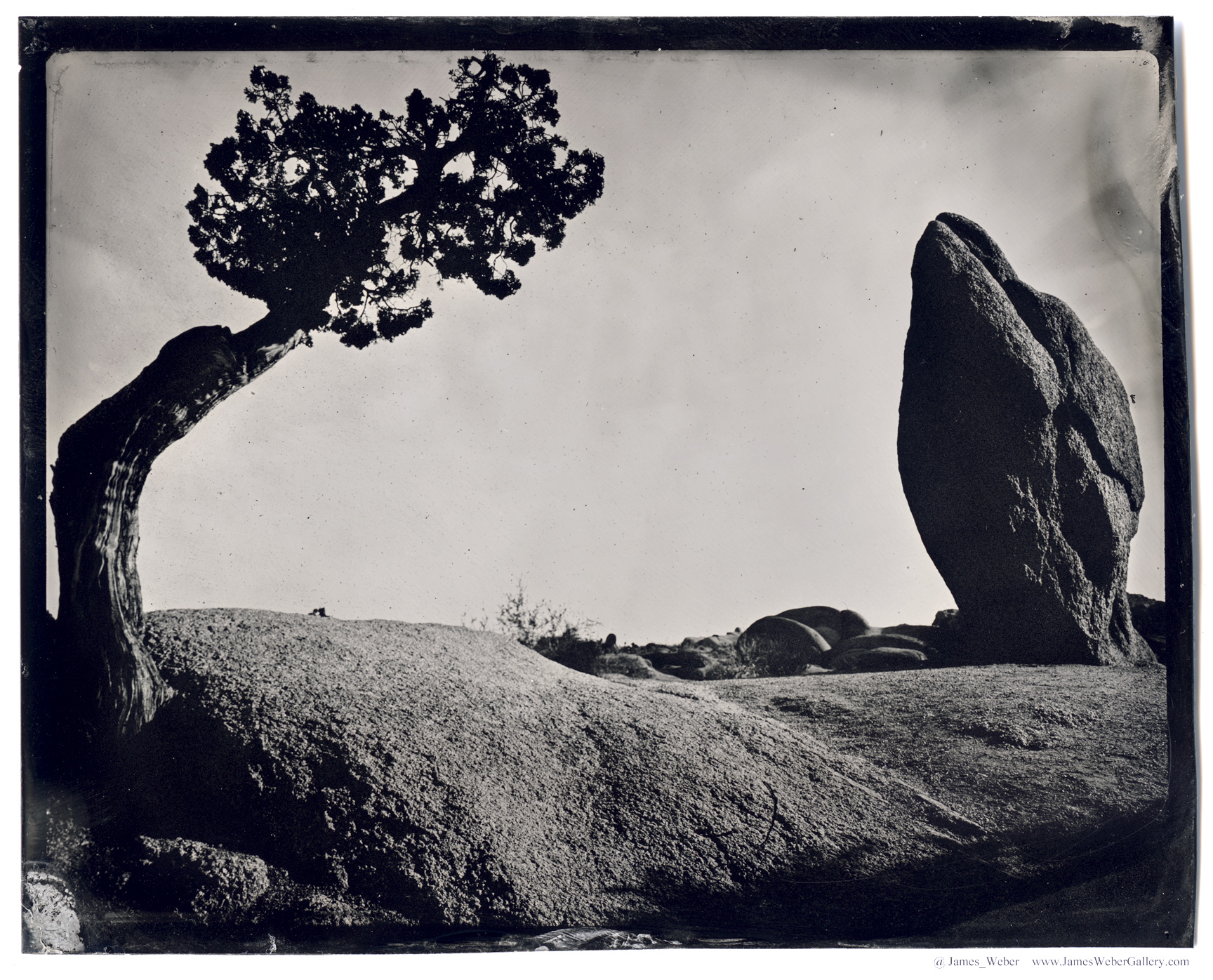 JAMES-WEBER-PHOTOGRAPHER-WET-PLATE-2014-00465.jpg