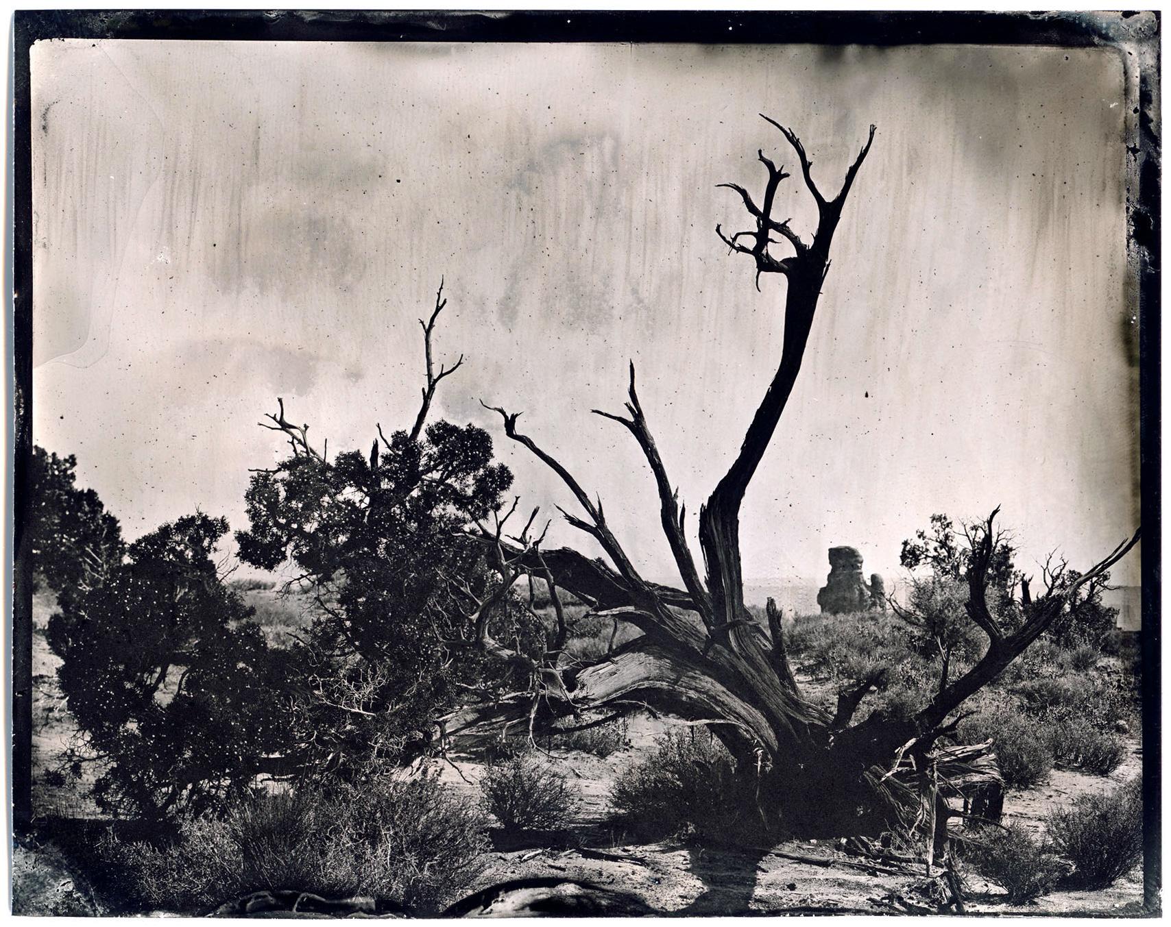 james-weber-wetplate-landscape-00550.jpg