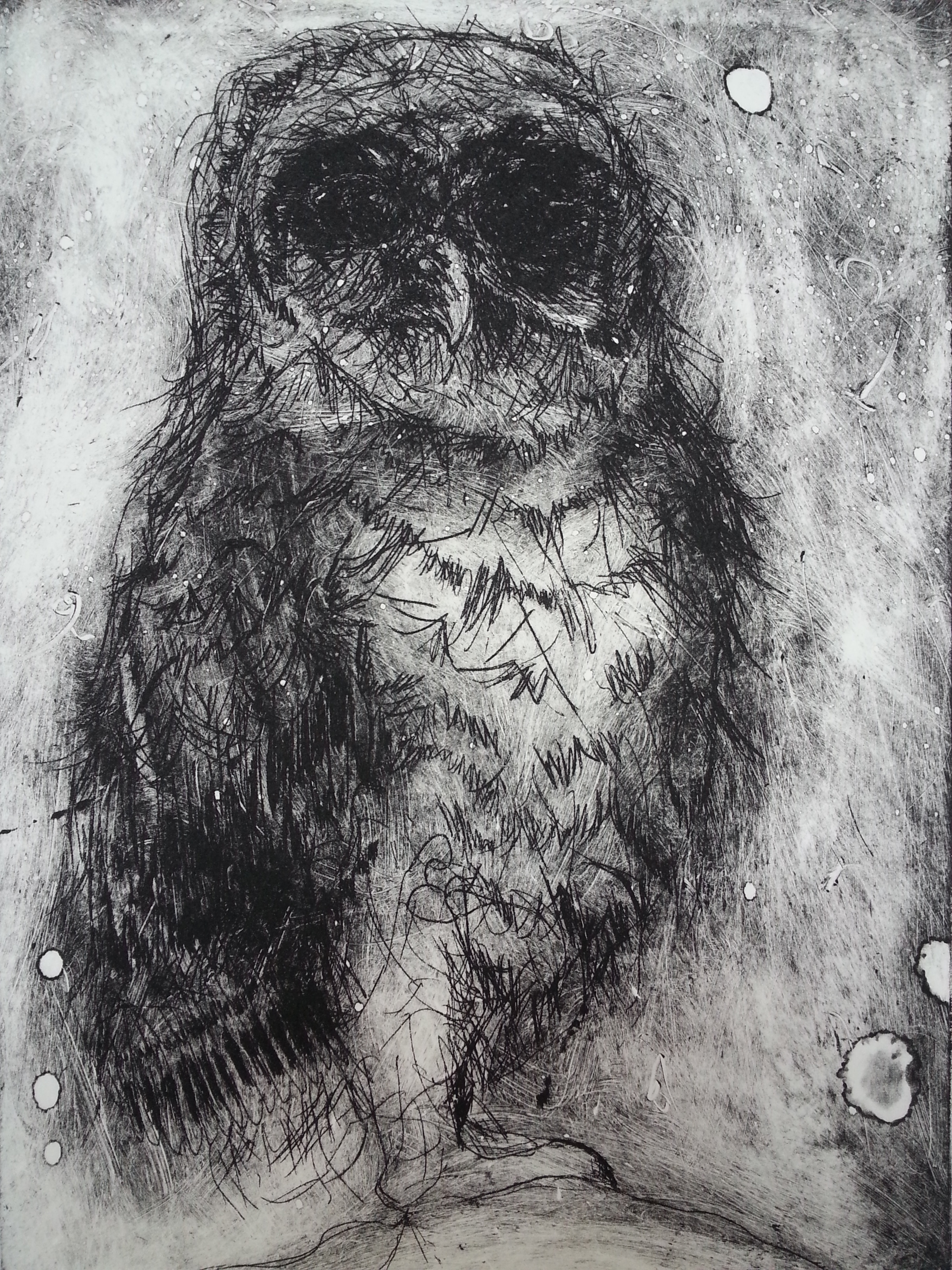 """Owl   Hand Pulled / Signed Zinc Plate Etching ( 2004 )  Approx. Image Size 8 1/2"""" x 11 1/2""""    $250"""