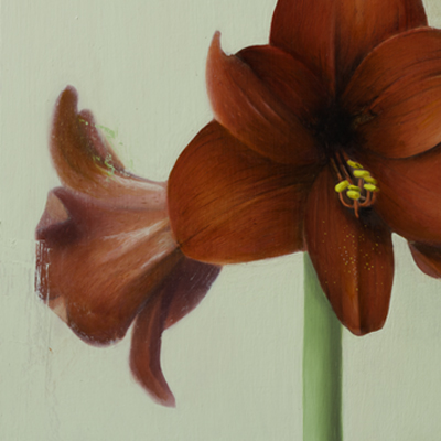"""Herb Smith ( American, New York )  Amaryllis (2017)  Oil on Wood  9"""" x 12""""   SOLD"""