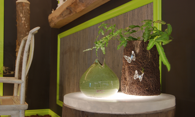 Metamorphosis-glass stump.jpg