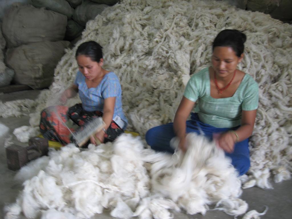 Women sorting wool by hand