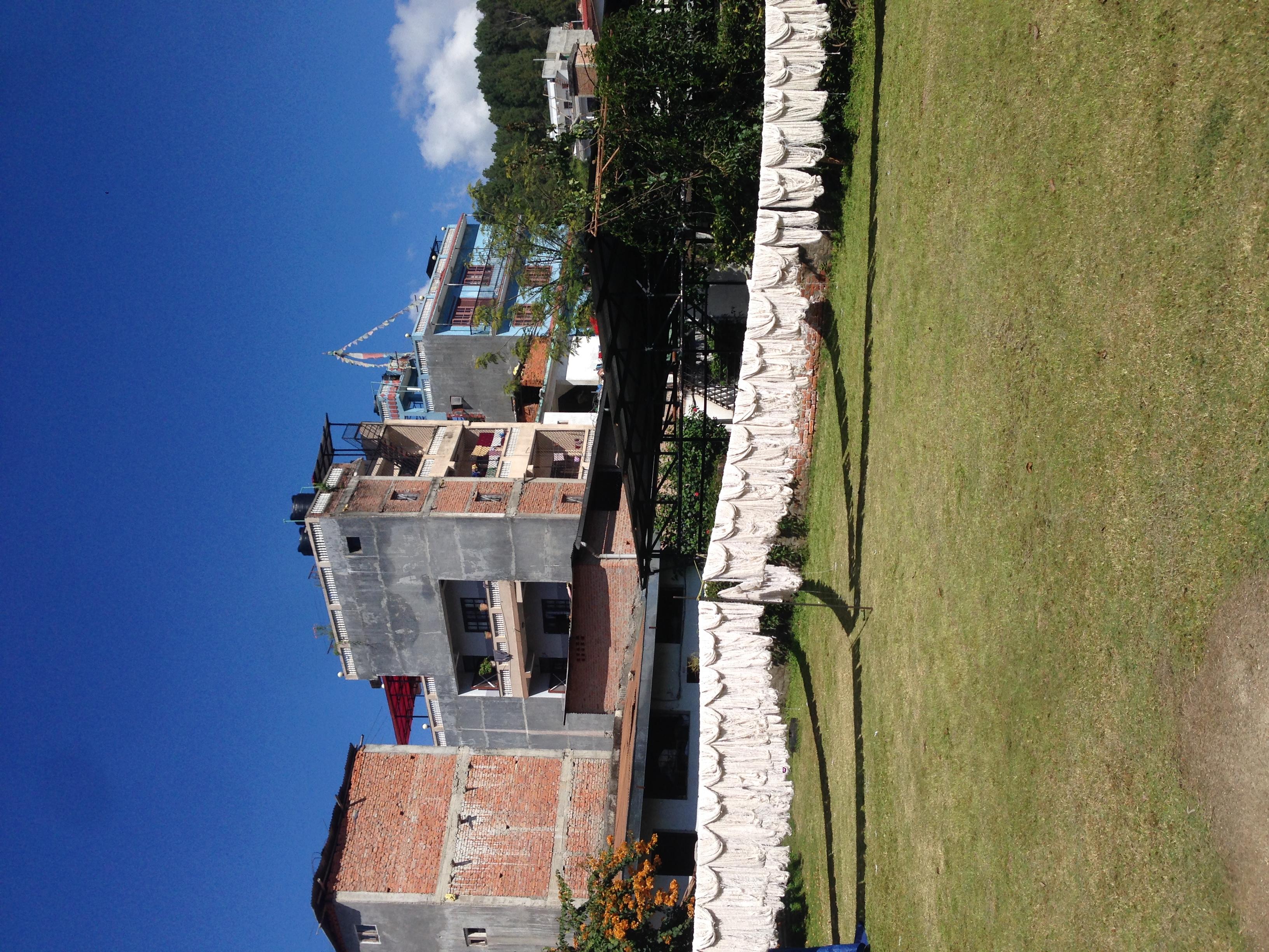 Drying wool in the sun