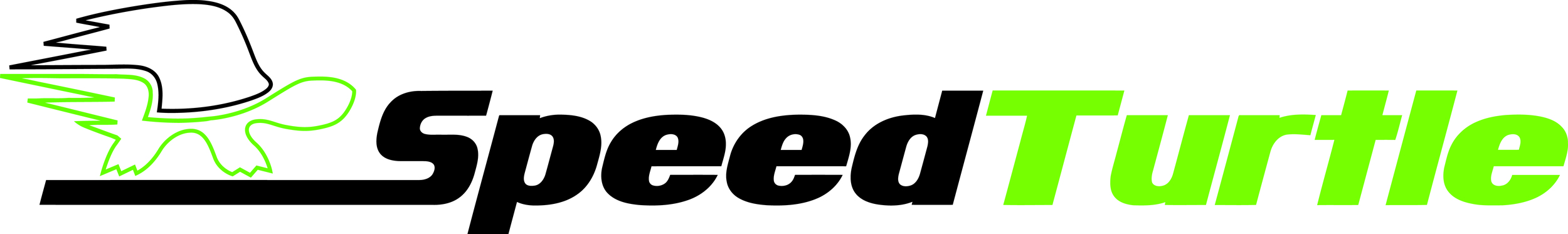 SpeedTurtleLogo.jpg