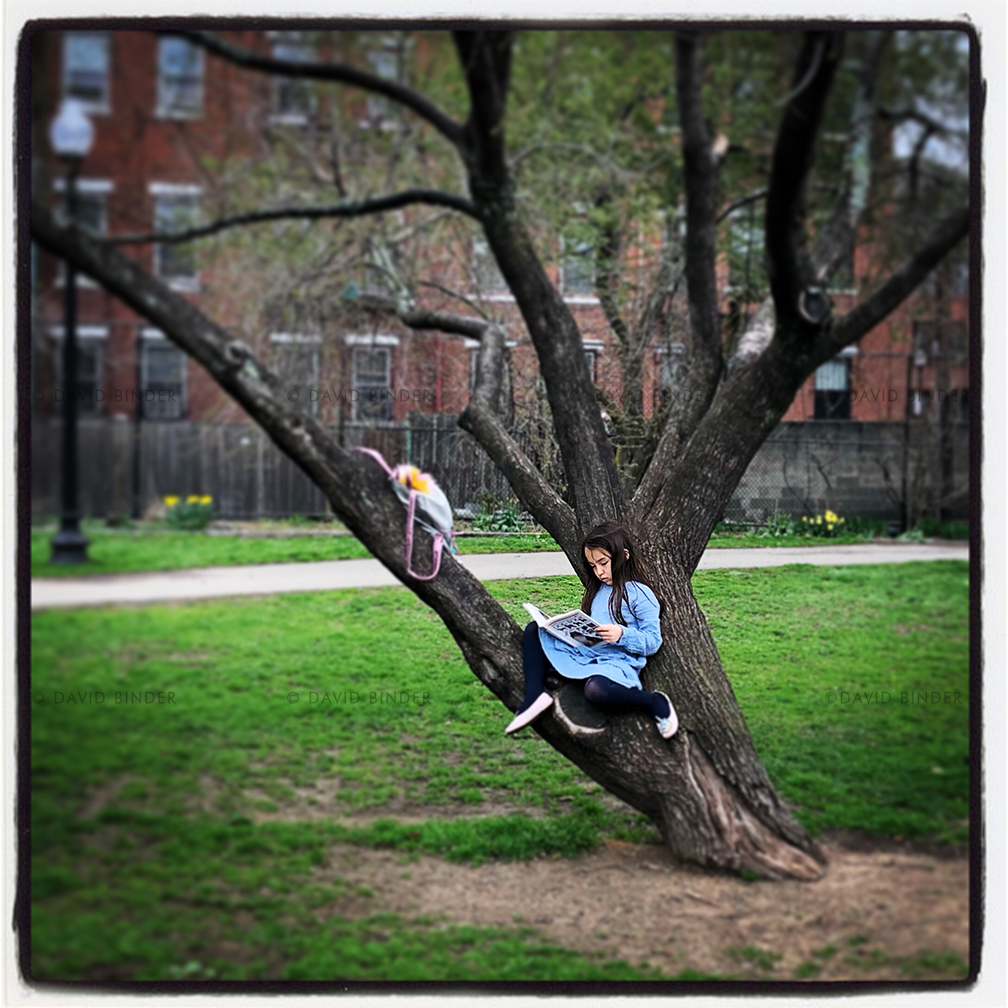iphone_boston_girl_tree.jpg