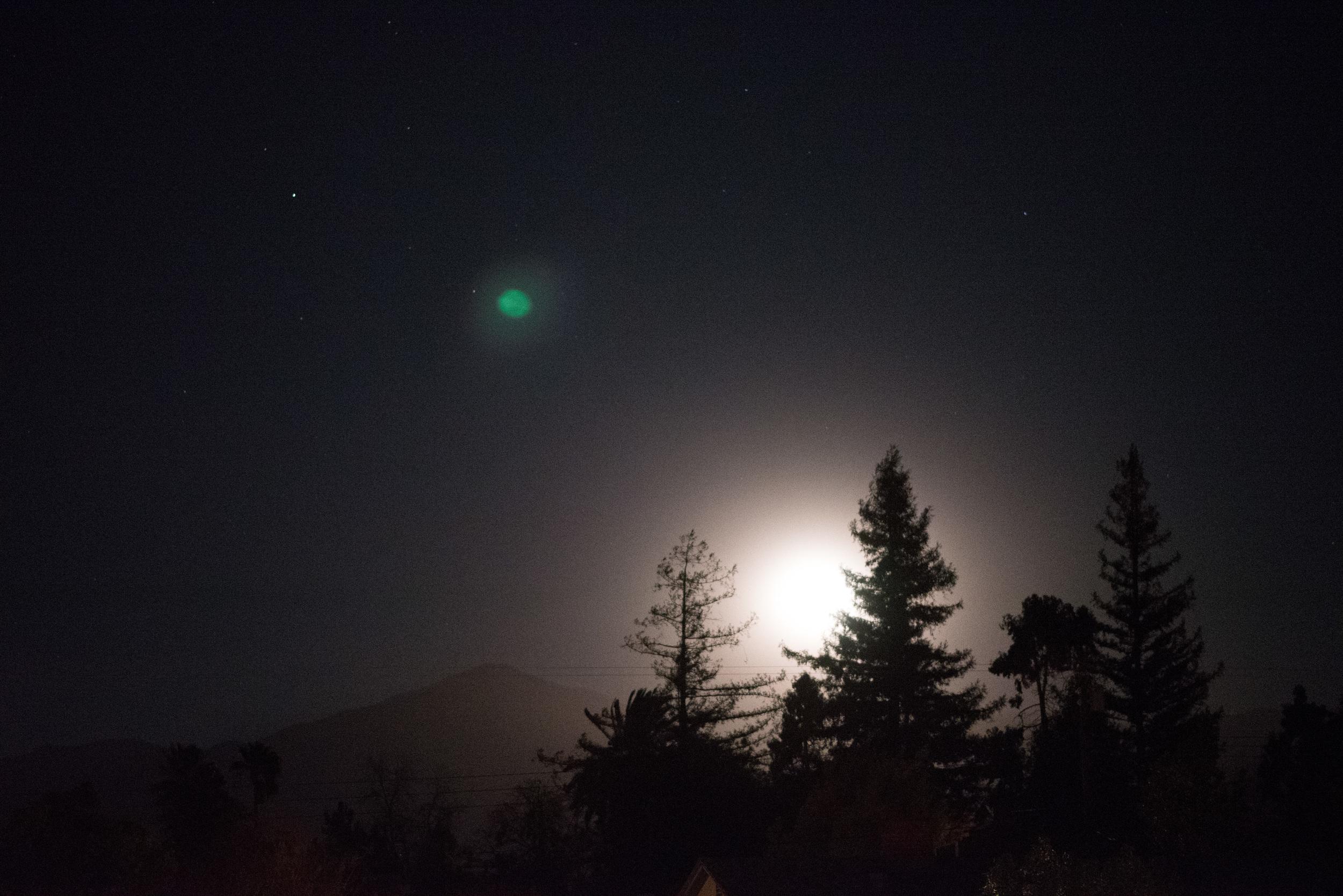 winternight-1.jpg