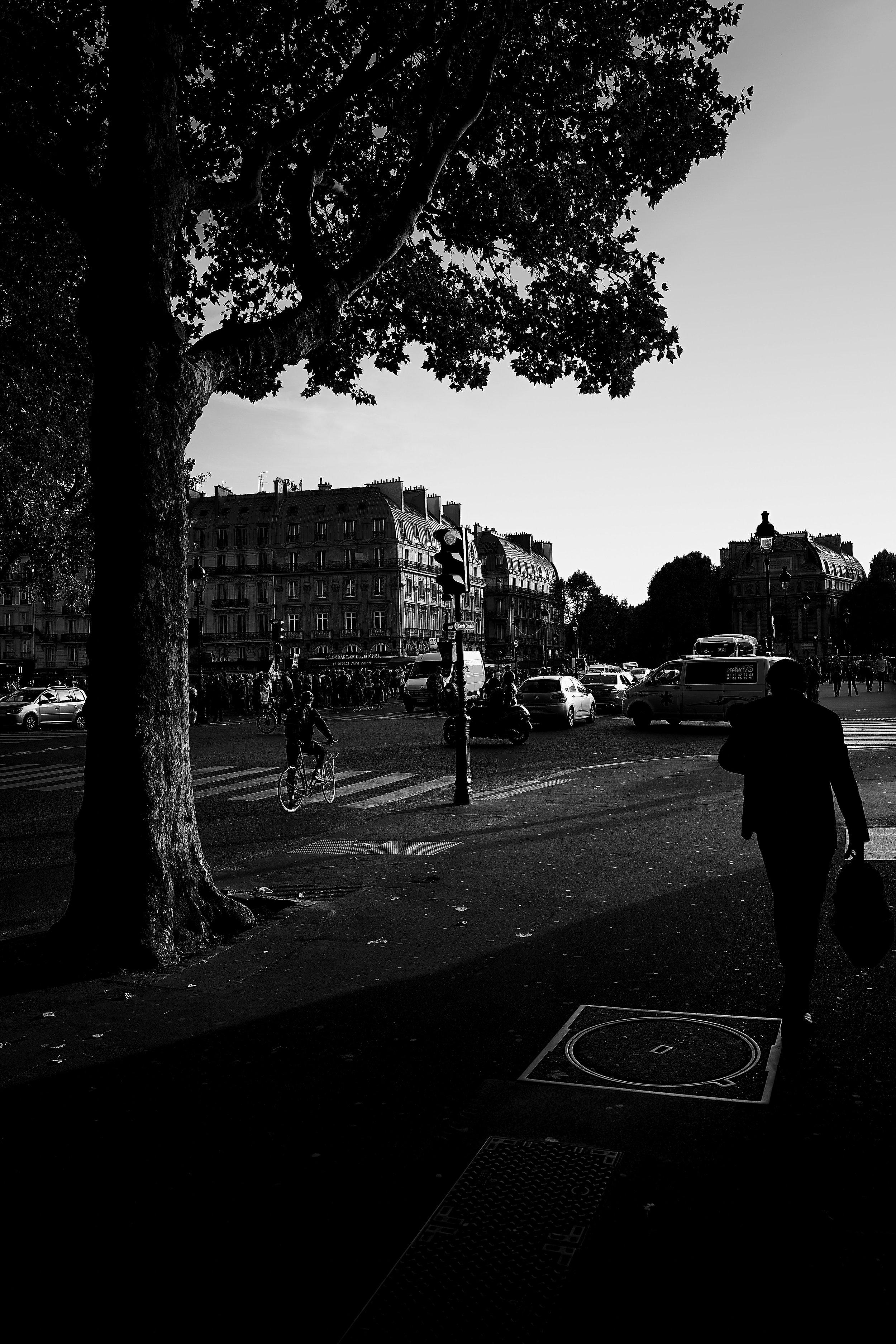 Paris(street) 3.jpg