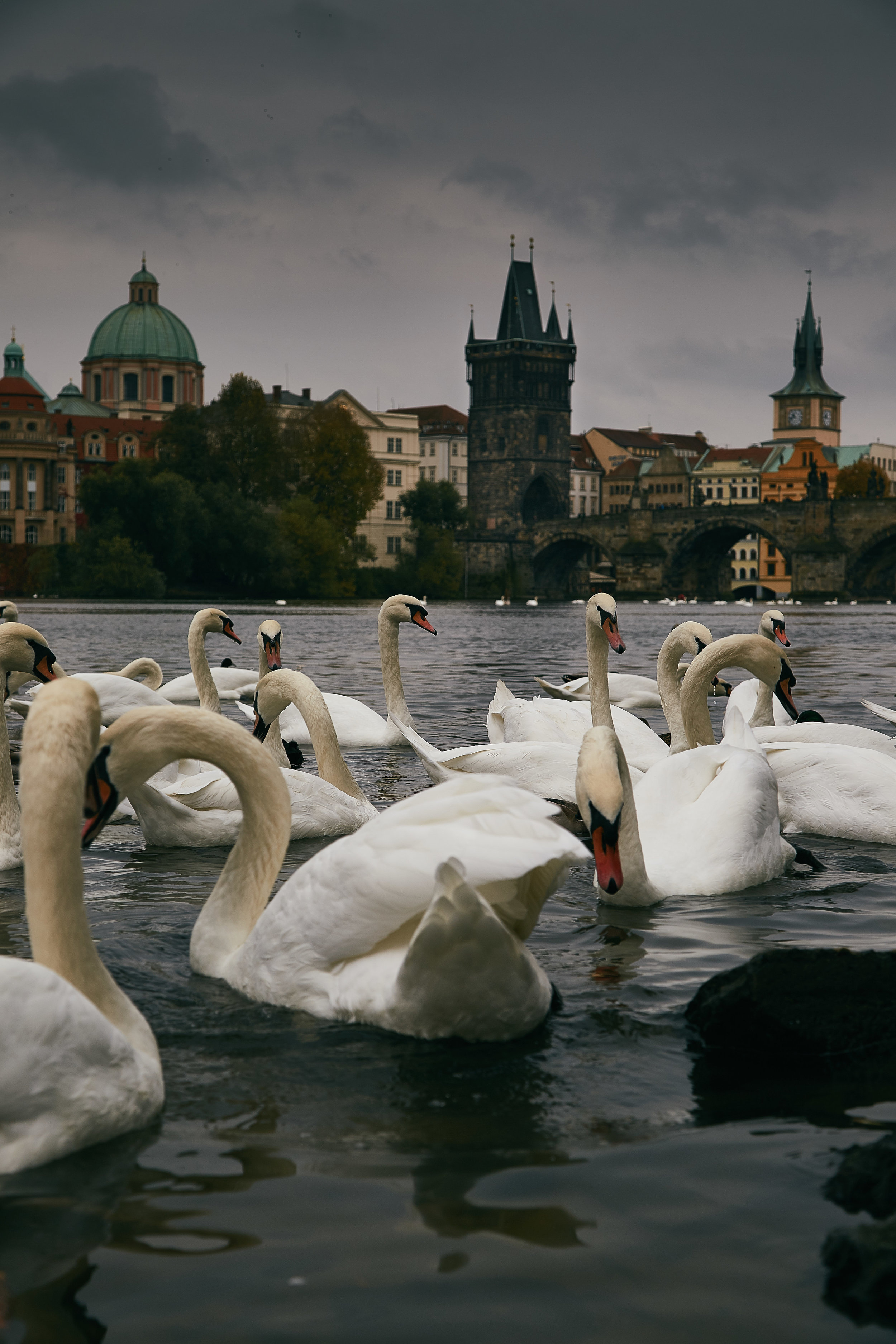 Prague2 1.jpg