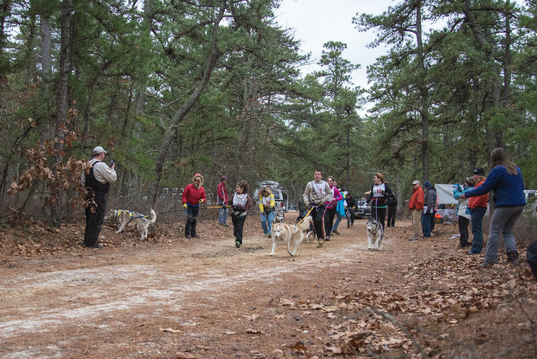 Pine-Barrens-Dryland_Run-November 30, 2013-57.jpg