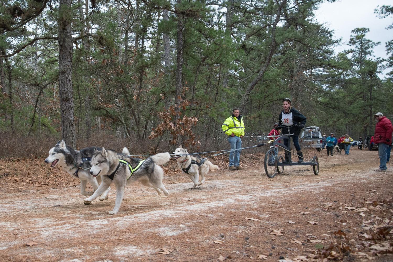 Pine-Barrens-Dryland_Run-November 30, 2013-55.jpg