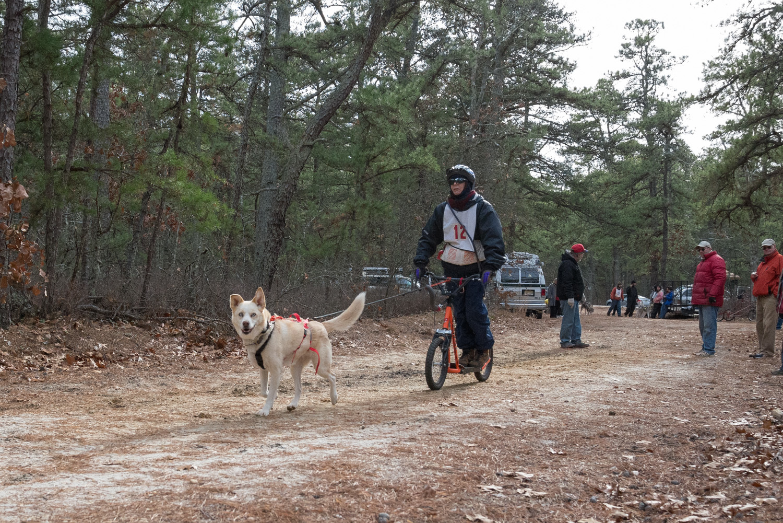 Pine-Barrens-Dryland_Run-November 30, 2013-47.jpg