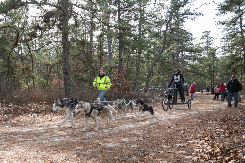 Pine-Barrens-Dryland_Run-November 30, 2013-40.jpg
