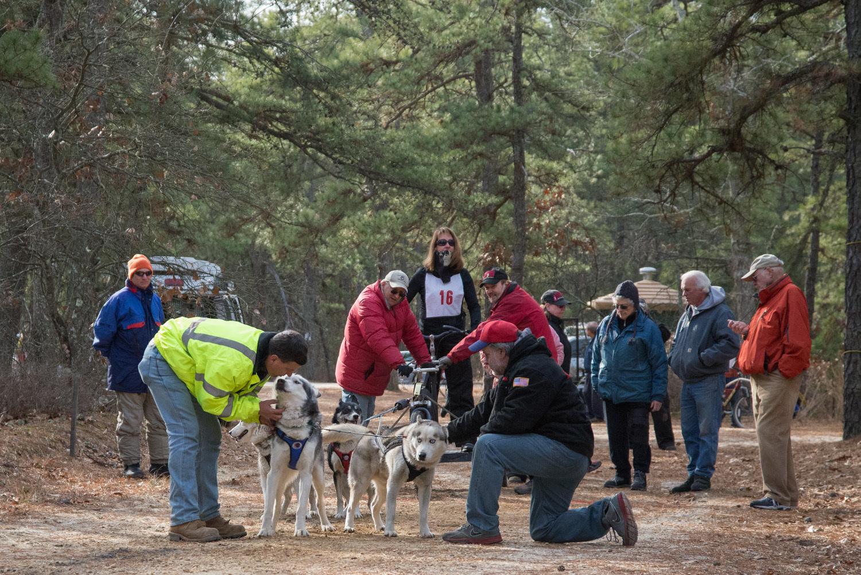 Pine-Barrens-Dryland_Run-November 30, 2013-39.jpg