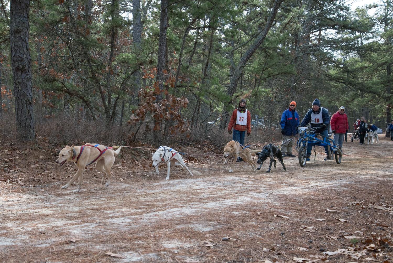 Pine-Barrens-Dryland_Run-November 30, 2013-34.jpg