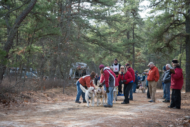 Pine-Barrens-Dryland_Run-November 30, 2013-32.jpg