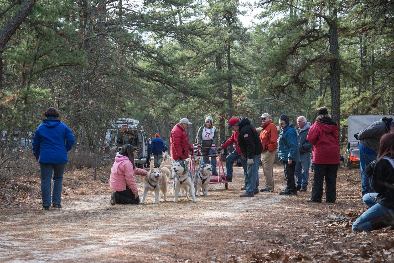 Pine-Barrens-Dryland_Run-November 30, 2013-30.jpg