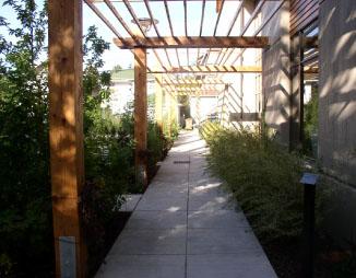 Arbor walkway.jpg